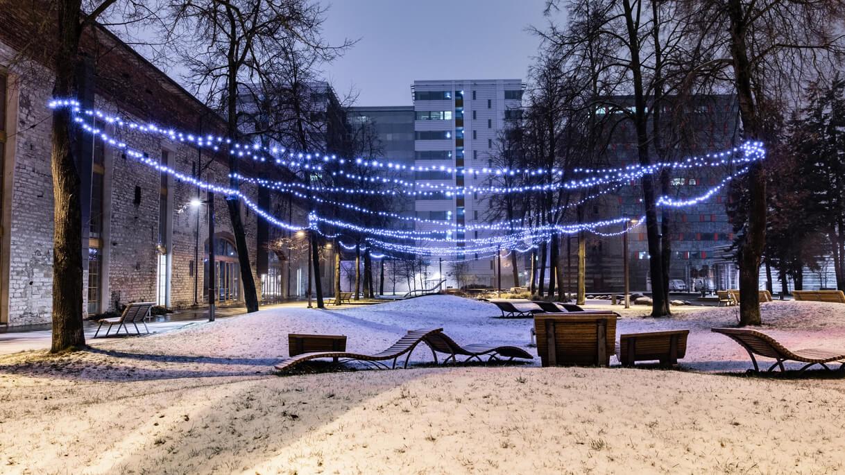 jõuluvalgustus puudele, jõulutuled, jõulutulede müük, jõulutulede paigaldus, led tulede paigaldus
